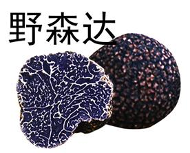 永仁野森达菌业有限公司Logo