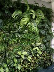 居家室内生态型仿真植物墙墙体制作价格