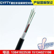 GYFTY-12B1层绞非金属无铠室外架空光缆