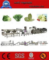 涡流式净菜加工流水线 中央厨房洗菜生产