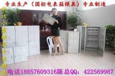 台州模具企业电表箱塑胶模具 2表电表箱模具
