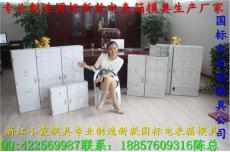 浙江加工电子式电表箱模具 放心选购厂家