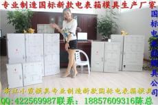 黄岩家电模具 生产2表位电表箱模具厂家