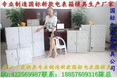 台州制造17表电表箱模具 塑料电表箱模具